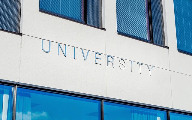 向井地美音 大学